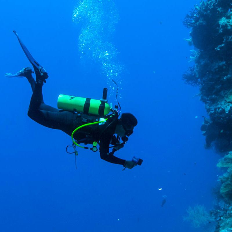YS_Activities_Diving